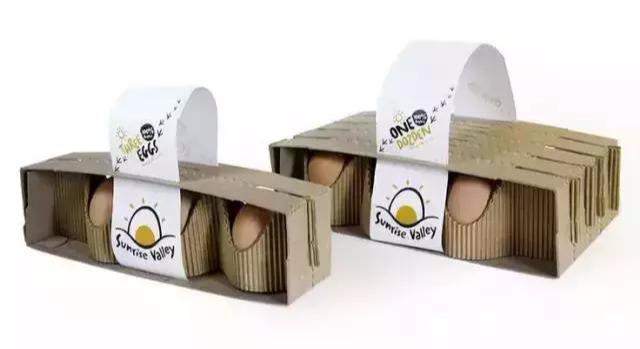 创意鸡蛋包装盒设计,突破传统装蛋盒的界限(图14)