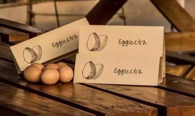 创意鸡蛋包装盒设计,突破传统装蛋盒的界限(图19)