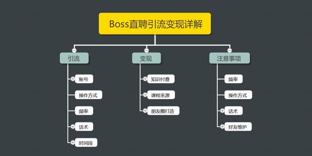 王半圈:Boss直聘引流变现详解,让网络赚钱更简单!【视频课程】