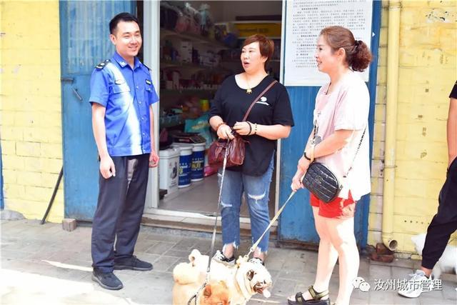 汝州市第一张犬牌发出,家有萌犬的你还在等什么插图4