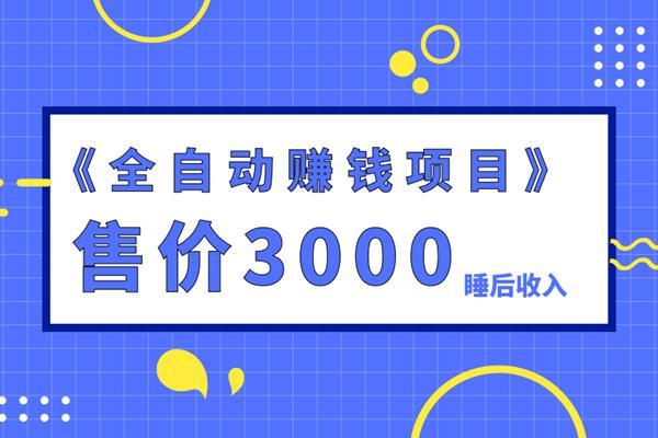 佐道副业特训营4:售价3000的全自动赚钱项目,打造睡后收入
