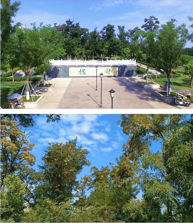 """探秘平顶山""""真""""公园社区 前厅后院双公园 背山面水好风水插图6"""