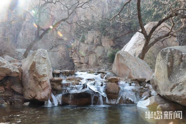 一早,青岛崂山景区冲上热搜!只因为太美了插图5