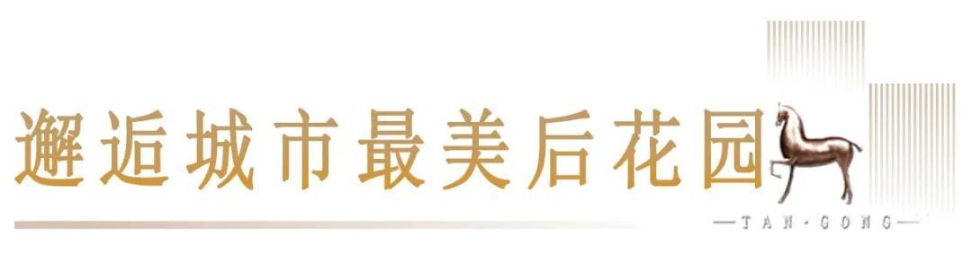 好奇!平顶山市中心最奢配高层,究竟卖啥价?8月22日揭晓插图12