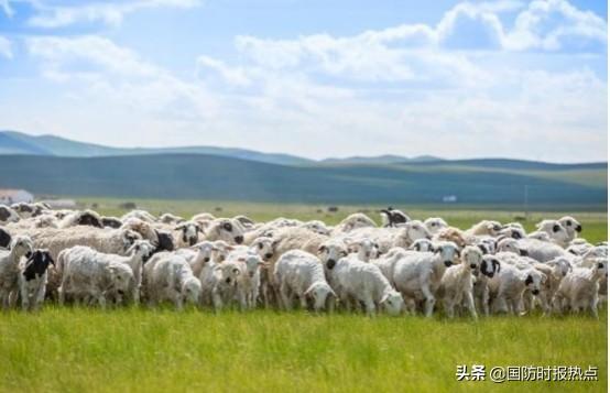 王毅:蒙古国向中国赠送3万只羊,邻国有难,中方也要投桃报李-第1张