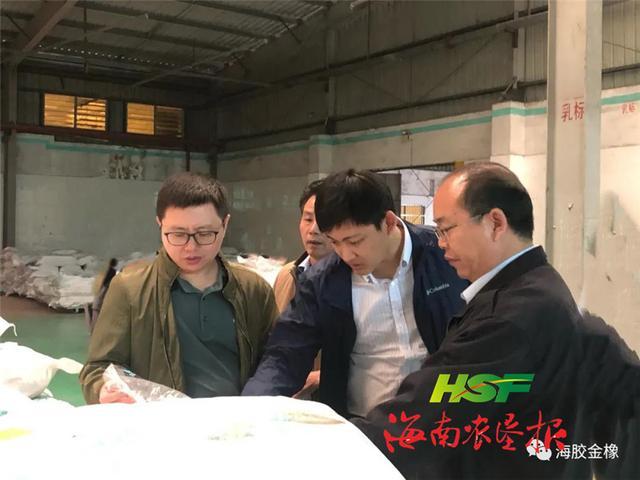 海南橡胶金橡公司领导到下属金石橡胶加工分公司调研