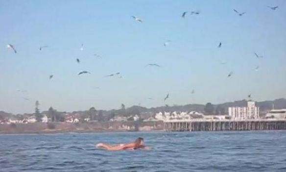 这女子在海中享受着阳光 然而下一秒发生的事,把所有人都吓呆了