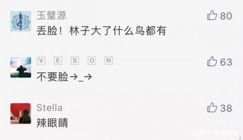 凤岭儿童公园女模拍不雅照 官方回应裸照事件 全球新闻风头榜 第5张
