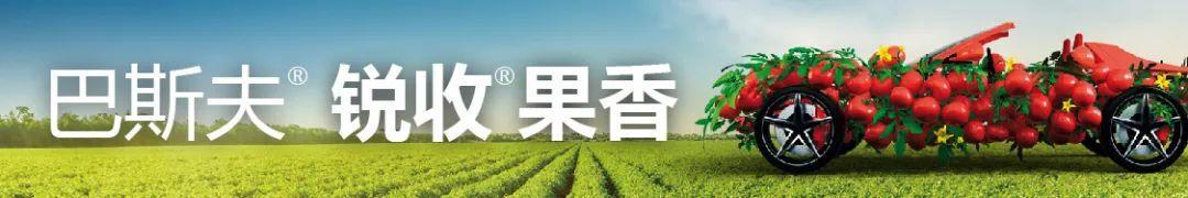 投资再加码!中农联合、新华制药、丰山集团、立本作物扩建农药相关产能-今日股票_股票分析_股票吧