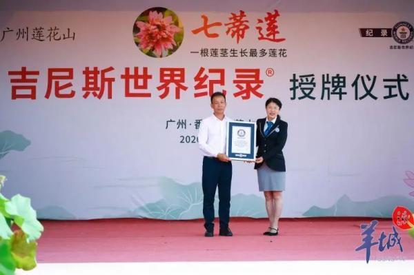 广州莲花山七蒂莲获吉尼斯世界纪录称号
