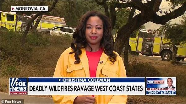 美国女记者正直播,一只熊飞奔而来,结局出人意料-第2张