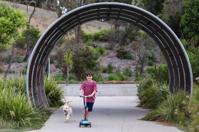 儿童骑行道:安全与乐趣兼顾
