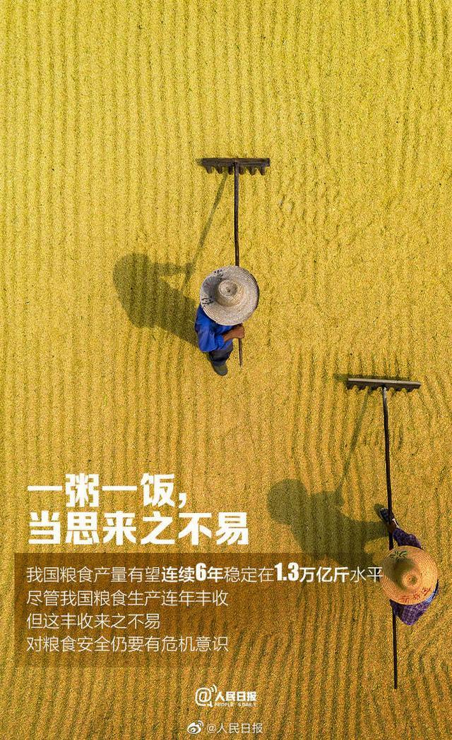 """世界粮食日,拒绝""""舌尖上的浪费"""" 全球新闻风头榜 第8张"""