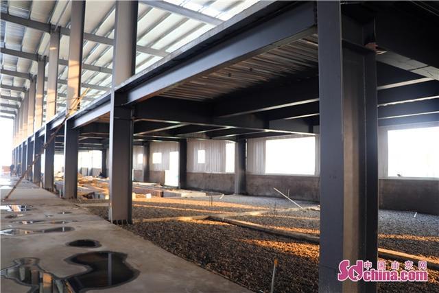新动能·新菏泽|郓城:以智能制造为突破口,推进产业转型升级