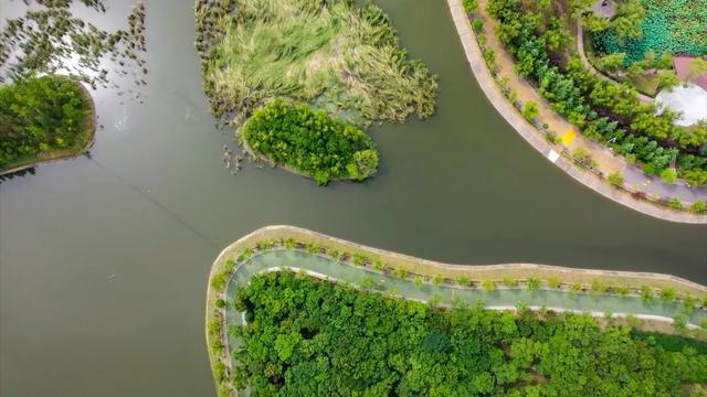 羡慕!一次交付5栋楼,生态园旁、湛河畔这个小区越来越香了_平顶山生活网插图3