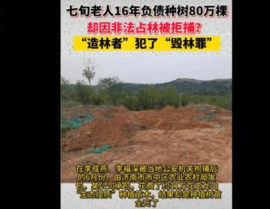 七旬老翁16年负债种树,荒山变绿林,却因非法占林被拘捕?#www.smxdc.net#