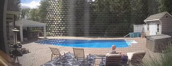 视频疯传!美国男子在自家别墅泳池旁睡觉 竟被一头黑熊一掌拍醒-第5张