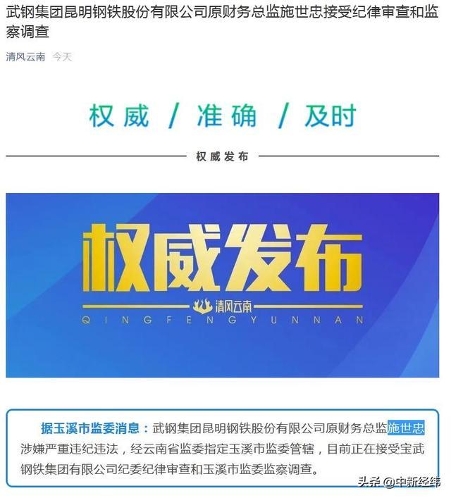 武钢集团昆明钢铁公司原财务总监施世忠被查