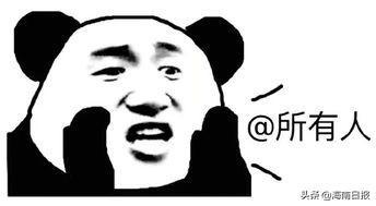 12月28日·海南要闻快报插图1