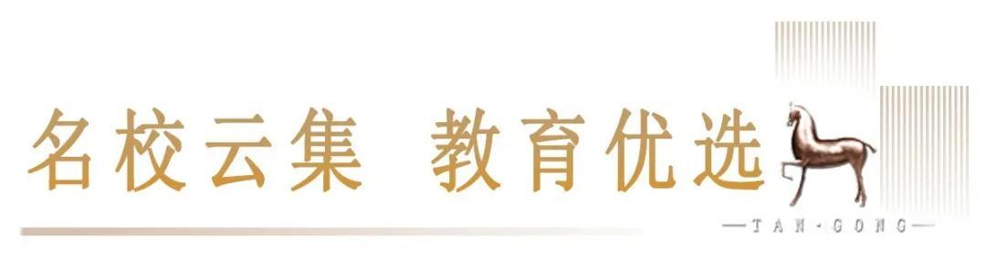 好奇!平顶山市中心最奢配高层,究竟卖啥价?8月22日揭晓插图19