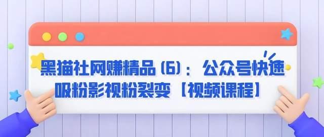 黑猫社网赚精品(6):公众号快速吸粉影视粉裂变【视频课程】