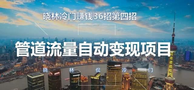 晓林冷门赚钱36招第4招,管道流量自动变现项目【视频课程】