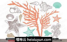 手绘海洋生物设计素材Coral starfish shell vector