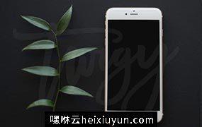 植物花饰陪衬iPhone样机模板 iPhone Mockup Square Format