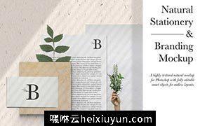 自然清新风品牌VI提案样机模版 Natural Stationery & Branding Mockup #2887216
