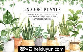 室内植物绿萝吊兰盆栽手账手绘水彩PNG免抠设计素材#061501