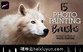 iPad 专用15个彩绘笔刷15 Photo Painting Brushes #2735307