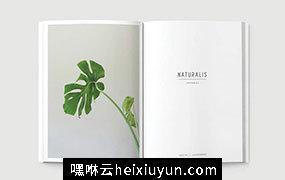 盆栽植物主题画册杂志设计模板 NATURALIS-Look-Book-Magazine #760710