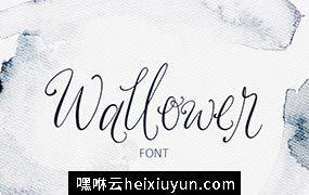 漂亮的手绘字体 Wallower Script Font #2163143