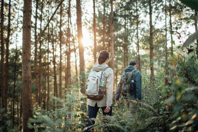 单日徒步登山,该准备哪些装备?快来看必备清单