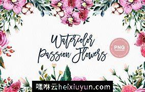 水彩西番莲剪贴画 Watercolor Passion Flowers #840187