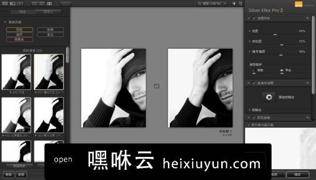 嘿咻云-摄影师必备PS调色滤镜插件 Nik Collection