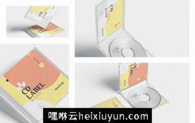 高品质的时尚高端逼真质感房地产CD光盘cd-label-case #363230
