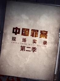 罪案现场实录第二季