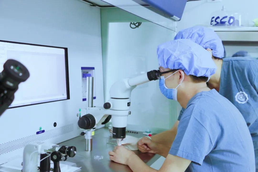 生殖医学博士罗嘉 :患者心中的「大家长」、「送子圣手」