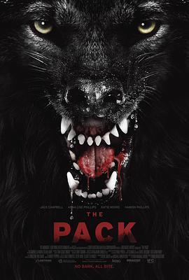 狼群2015海报