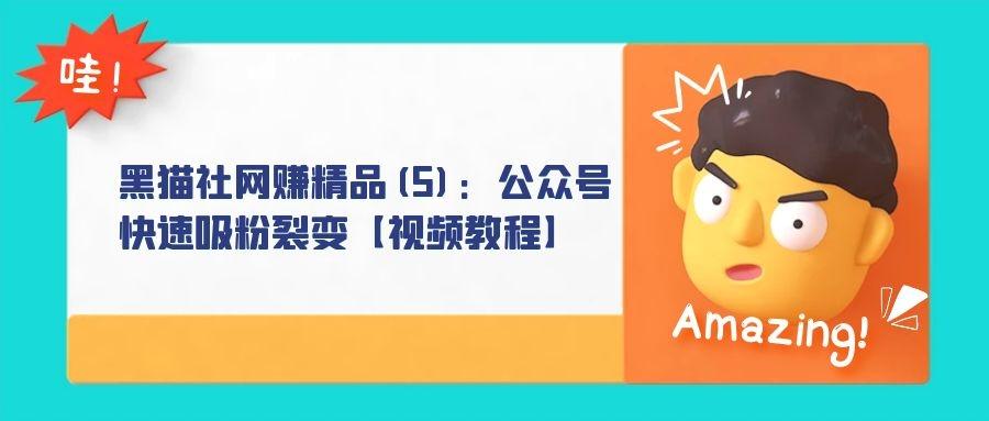 黑猫社网赚精品(5):公众号快速吸粉裂变【视频教程】