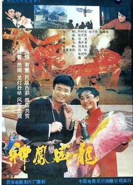 神凤威龙海报