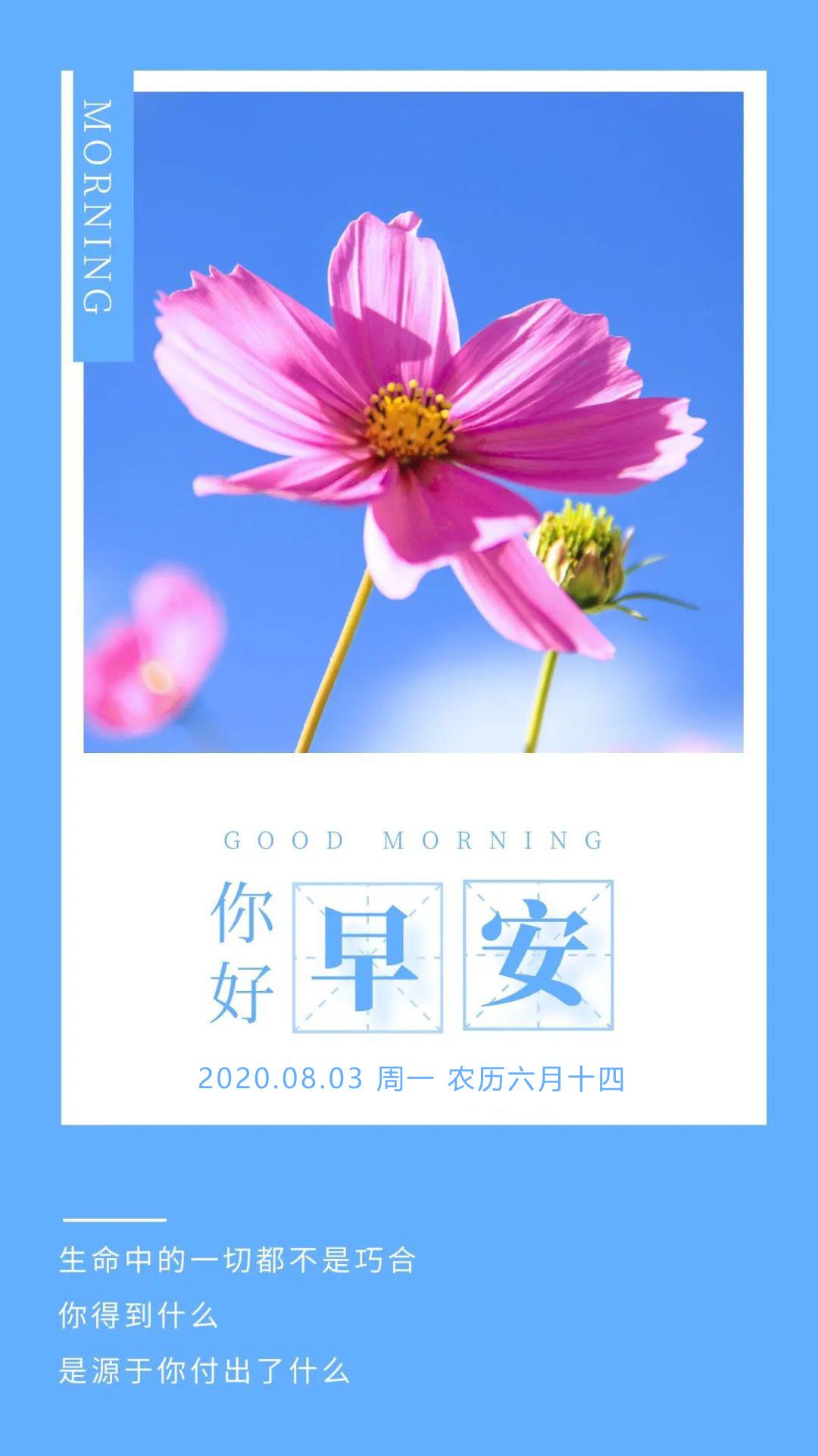 itotii新周早安心语励志图片日签带字:用心生活,用力向上