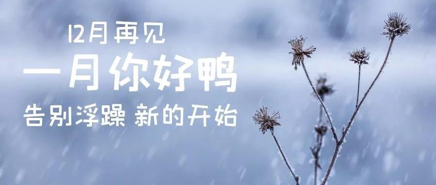 12月再见,1月你好朋友圈文案句子配图片
