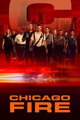 芝加哥烈焰 第八季海报