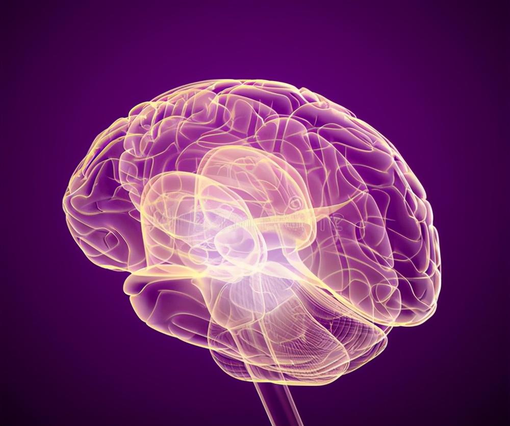 脑瘫治疗方法