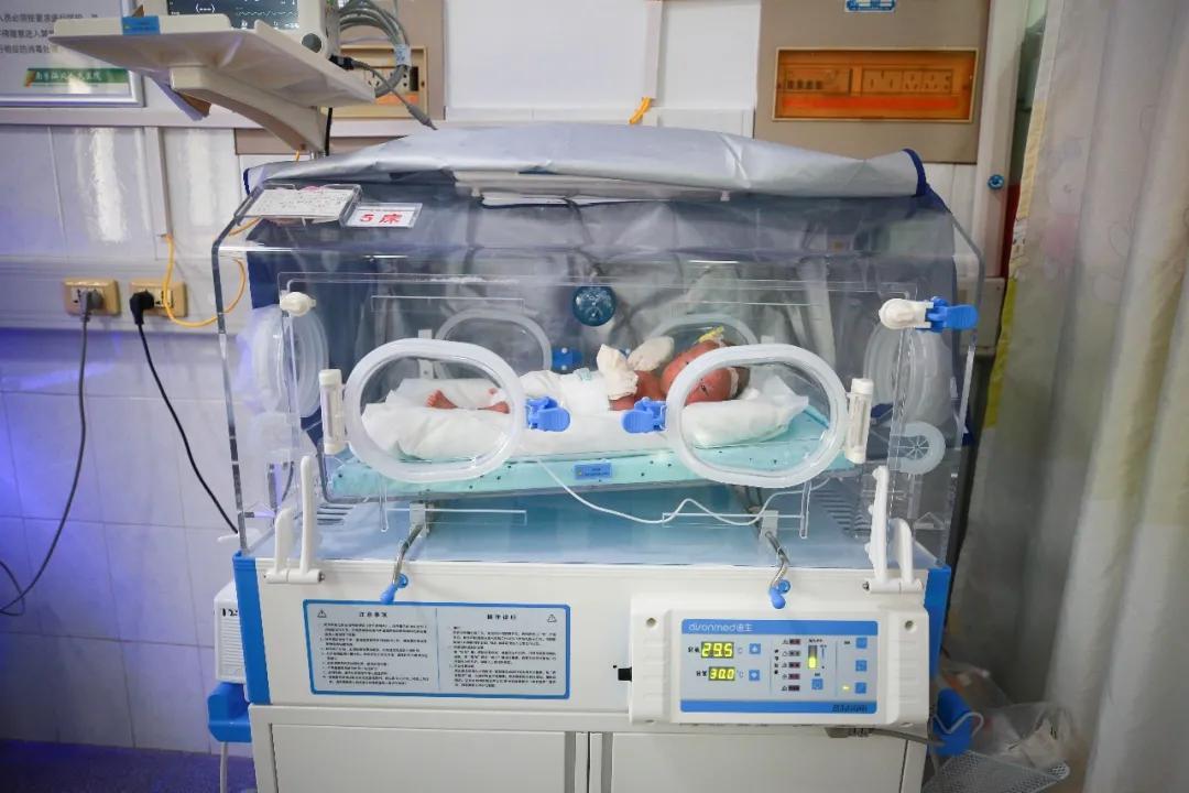 不足3斤早产儿成功抢救,健康出院
