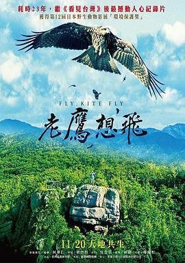 老鹰想飞海报