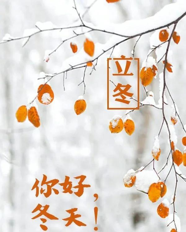立冬天冷的问候语短句带图片