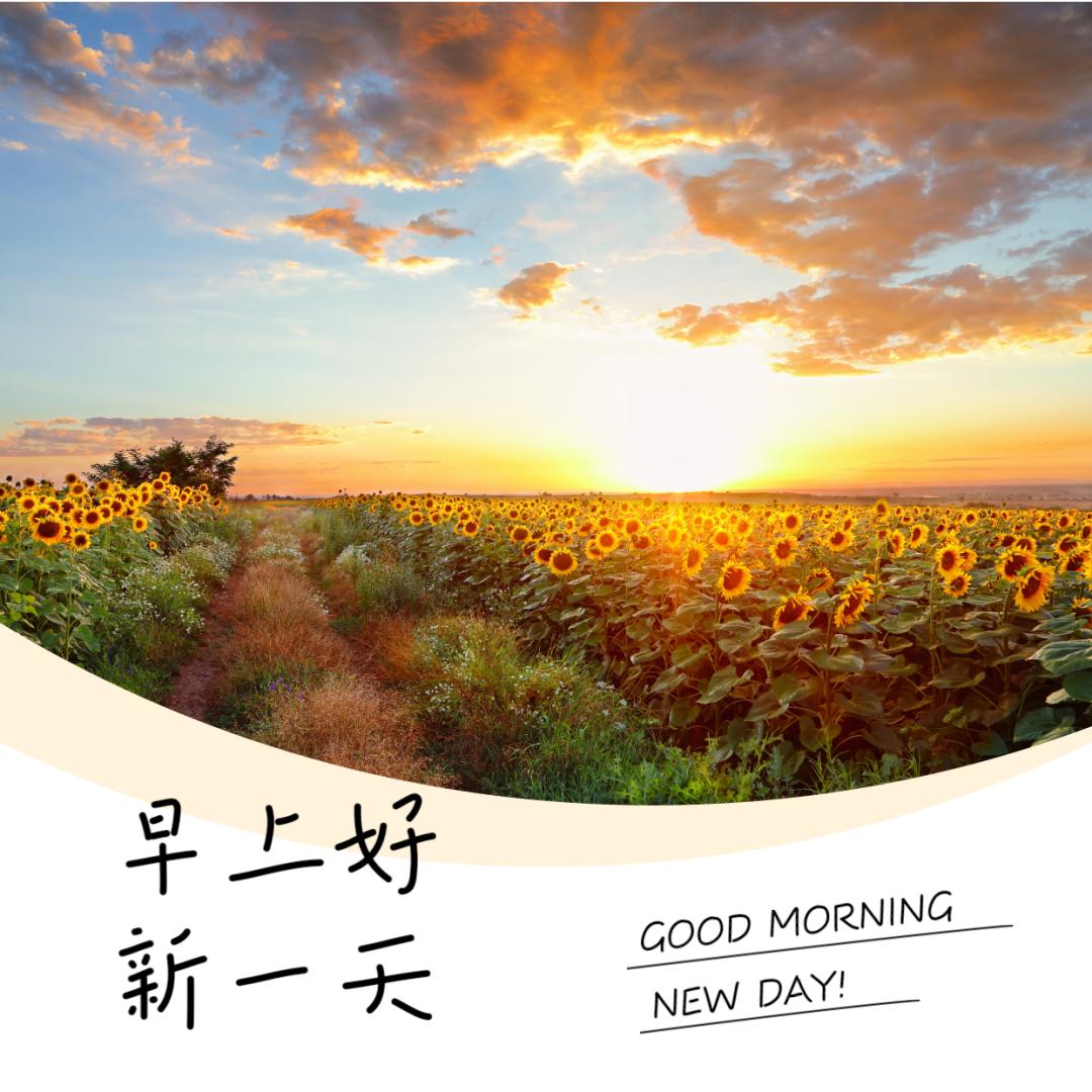 周末早晨好加油激励语录图片,共勉!